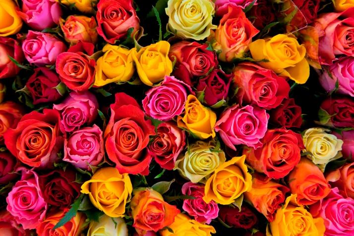 חנות פרחים